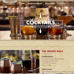 Website Design Company - Montenegro Amaro